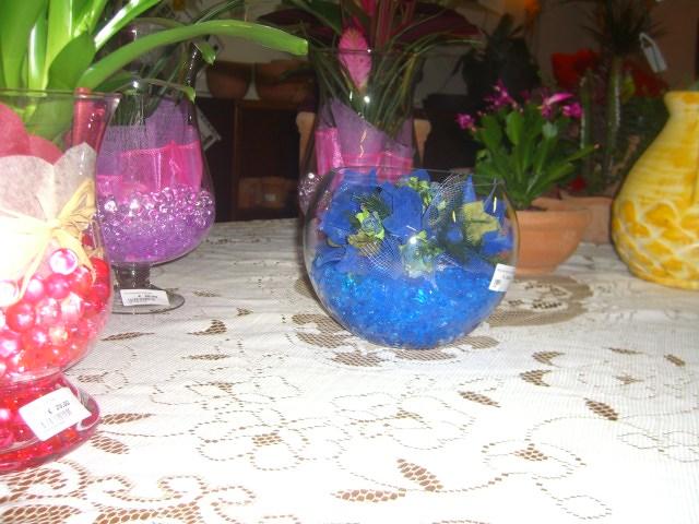 Natale vivai roma piante natalizie idee regalo vivaio - Coprivasi da interno ...