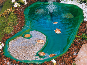 Laghetti tartarughe realizzati in materiale antisdrucciolo for Acquario aperto prezzi