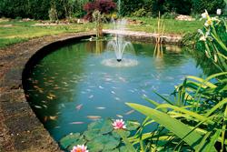 Acqua laghetti tartarughe giardini laghetto resina telo for Laghetti termoformati